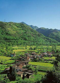 Vista de Tellego (Ribera de Arriba) | por Montaña Central de Asturias