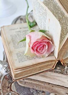 Super Ideas For Wall Paper Flowers Pink Ana Rosa Book Flowers, Paper Flowers, Book Photography, Creative Photography, Vintage Flowers, Vintage Pink, Vintage Art, Look Wallpaper, Parfum Rose