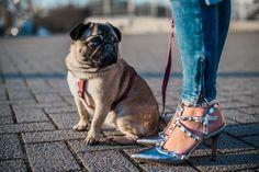 Outfit blauer Wollmantel und silberne Details || Winteroutfit || Julies Dresscode || #ootd #fashion #fashionblogger || Valentino Lookalikes