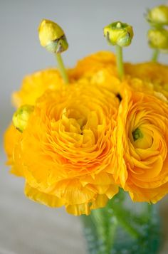 <3 #flowers