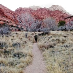 """""""A 15 minute walk turned into a 3 hour #hike."""" Photos shared by Alex Canonizado. #NeverStopExploring Where do you lose yourself in #nature?"""