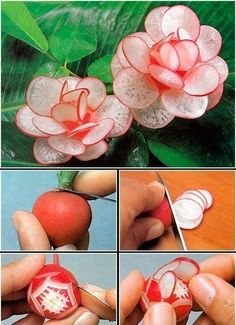 Dekoracija hrane - Volimo Net Kuvar i Recepti - VolimoNet Beautiful flowers made of Radishes are impressive decorative food art. Mobile LiveInternet Assembly of master classes for decorating dishes Radish flowers would be lovely on the antipasto platter w Veggie Art, Fruit And Vegetable Carving, Vegetable Salad, Vegetable Decoration, Food Decoration, Fruit Decorations, Vegetable Design, Radish Flowers, Cucumber Flower