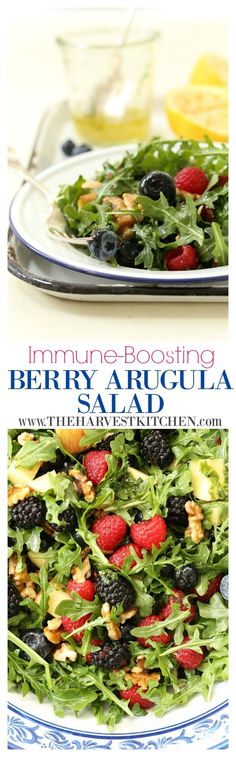 This Immune Boosting Arugula Berry Salad combines wild arugula with a mix of fresh sweet berries, some bits of apple and walnuts, and then it's all tossed in a deliciously light and refreshing citrus vinaigrette. This salad will tantalize your taste buds and satisfy your nutritional needs at the same time. @theharvestkitchen.com