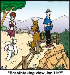 Dog Comics, Read Comics, Funny Cartoons, Funny Memes, Dog Jokes, Dog Sayings, Funny Sayings, Cartoon Dog, Siamese Cats