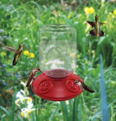 New Dr, JB Clean Hummingbird Feeder with a generous 48 oz. nectar jar, Available at SongbirdStation.com
