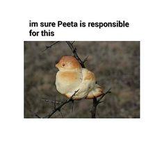 Peeta's