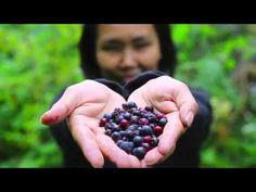 La vie est Belle avec Le Triangle De Santé de Kyani - YouTube
