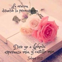 Salmos 91:2 Diré yo a Jehová: Esperanza mía, y castillo mío; Mi Dios, en quien confiaré.♔