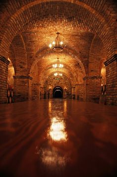 Okay, so it's a really lovely wine cellar, and that's super-coolio and all... But I can't help just really wanting to fence in that space.