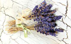 Lavender Bouquet HighRes – Bouquet of Flowers