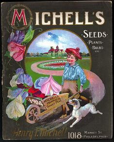 """Henry F.Michell - Michell's Seeds, Glossy Art Print Taken From A Beautifully Illustrated Vintage Seed Catalogue Or Seed Packet Cover. Posters Vintage, Vintage Labels, Vintage Ephemera, Vintage Cards, Vintage Artwork, Vintage Signs, Vintage Prints, Garden Catalogs, Plant Catalogs"