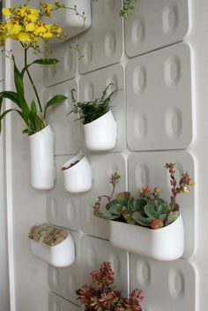 ღღ Wall garden at Sabrina Soto's Penthouse