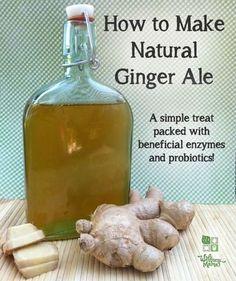 Natural gingerale. Handmade sodas that are good for you. Probiotics! Natural Ginger Alevia wellnessmama.com