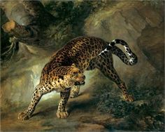 Leopard - Jean-Baptiste Oudry - 1741 - Rococo