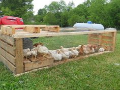 Pallet Palace: Chicken Tractor Made from Upcycled Pallets