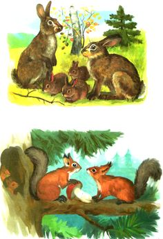 Animals For Kids, Cute Animals, Squirrel Art, Different Forms Of Art, Animal 2, Small Art, Animals Images, Forest Animals, Animal Crafts