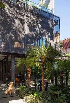 Casa no Jardim Paulistano / GrupoSP