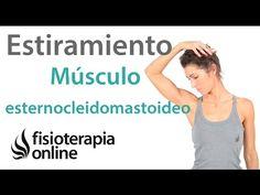 Estiramientos cervicales - Músculos esternocleidomastoideos. | Fisioterapia Online