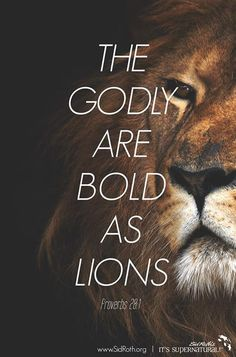 spiritualinspiration: As a believer in Jesus Christ, you are called to live a bold, confident and overcoming life. You don't have to live under the weight and pressure of fear. You don't have to live with daily anxiety. Because of Jesus, fear, worry and Bible Verses Quotes, Bible Scriptures, Lion Bible Verse, Faith Scripture, Prayer Quotes, Bible Art, Jesus Quotes, Proverbs 28, Lion Quotes