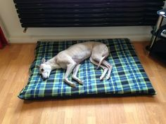 KosiPet Green Check Fleece Large Spare Cover For Dog Bed,Pet Bed ** Discover this special product, click the image