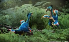 Caudipteryx original by damir-g-martin.deviantart.com on @deviantART