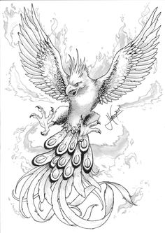 Phoenix Bird Drawing Wings 44 Ideen - Bird`s - Phoenix Bird Tattoos, Phoenix Tattoo Design, Phoenix Wings, Wolf Tatoo, Pheonix Drawing, Phoenix Artwork, Wing Tattoo Designs, Tattoo Stencils, Animal Coloring Pages