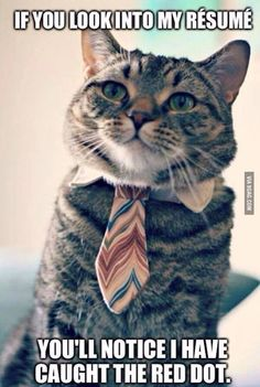 That's why you should hire me - 9GAG