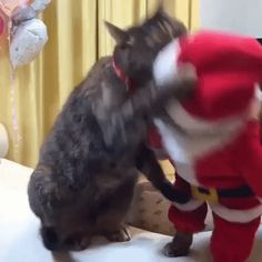 The war on Christmas is real! https://plus.google.com/115485979219209097599/posts/Tf8UZD9TmK1