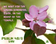 Psalm 48:9