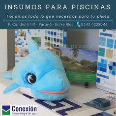 297d78a43e1d 29 mejores imágenes de Accesorios para Piscinas en 2019   Accesorios ...