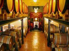 Fattoria Dei Barbi Winery - Montalcino - Italy... LOVE Barbi Brunello di Montalcino