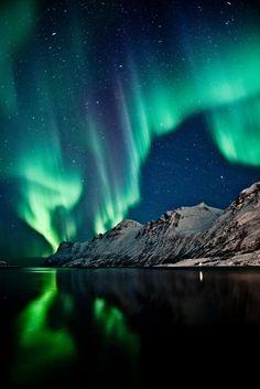 Voir une aurore boréale : Aurora Borealis in Ersfjordbotn, Tromsø, Norway. Beautiful Sky, Beautiful Places, Beautiful Pictures, Aurora Borealis, Northen Lights, Tromso Northern Lights, Alaska Northern Lights, Natural Phenomena, Science And Nature