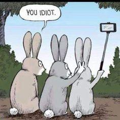 Funny Animal Jokes, Funny Puns, Really Funny Memes, Cute Funny Animals, Stupid Funny Memes, Funny Laugh, Funny Relatable Memes, Hilarious Jokes, Funny Humor