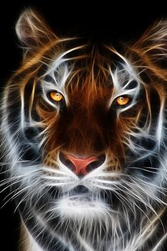 Tiger Fractal  é disso que estou falando as telas digitalizadas estão tomando o lugar das telas artisticas