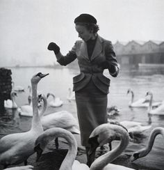 Feeding the swans.....in my designer clothes