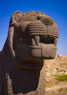 """Massive Basalt Hittite Lion Carving. The Ain Dara temple, located northwest of Aleppo, Syria, is an Iron Age Syro-Hittite temple noted for its similarities to Solomon's Temple as described in the Hebrew Bible. It was in existence from 1300 BC until 740BC and remained """"basically the same"""" during the period of the Solomonic Temple's construction (1000-900BC) as it had been before, so that it predates the Solomonic Temple."""