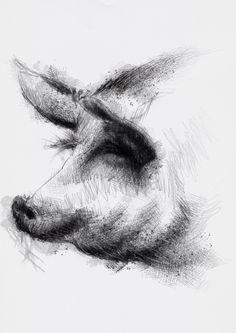 SEAN BRIGGS: One of my sketch a day drawings Adult pig #drawing #farmanimal #pig #sketch #swine