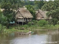 Also going to be going to some Amazon villages in Peru this summer.
