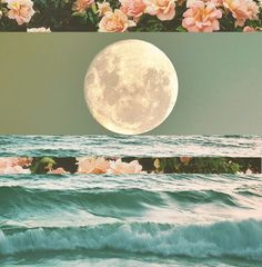 This beautiful image reminds me of my teacher Angela who is amazing with collage creation <3 www.ShamanicReiki.ca