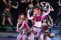 http://mantan-web.jp/gallery/2016/04/20/20160420dog00m200011000c/039.html