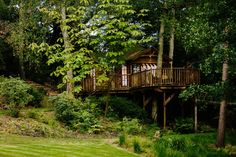 Tree House Kitchen - Treehouse / Blue Forest Treehouses