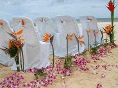 birds of paradise bouquets   Wedding Flowers :: Bird of Paradise » bubbly bride