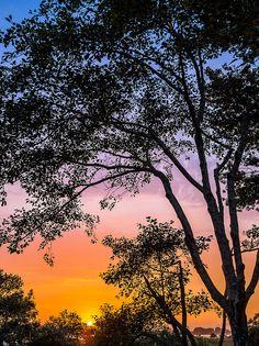 ✮ Eureka Sunset  - Eureka, California