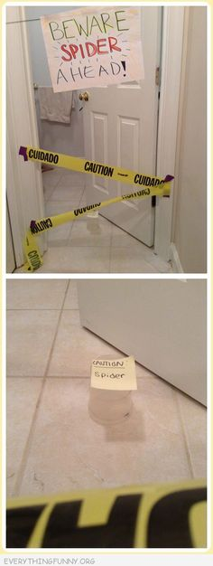 funny caution tape around beware spider ahead