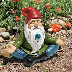 Image result for gnome garden