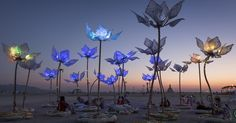 Pulse and Bloom at Burning Man 2014 - Flower Power An interactive LED sculpture and popular chillout destination, was made up of 25 mechanical lotus flowers with rhythmically shifting colors. Burning Man 2014, Burning Man Art, Burning Man Sculpture, Sculpture Art, Sculptures, Parc A Theme, Instalation Art, Alternative Art, Festival Looks