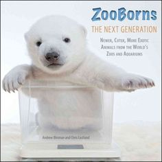 Picture of ZooBorns The Next Generation: Newer, Cuter, More Exotic Animals from the World's Zoos and Aquariums