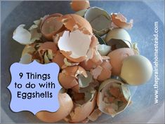 9 Things to do with eggshells