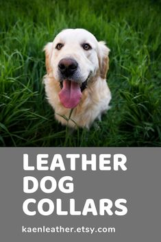 These full grain leather collars are perfect for your pup!  #kaenleather #leatherdogcollars #etsy Pet Costumes, Leather Sheets, Leather Dog Collars, Inevitable, Etsy Handmade, Im Not Perfect, Things To Sell, Pup, Gifts