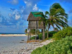 Tulum beach/tree house.